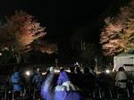 2018.12.1紅葉祭り4.jpg